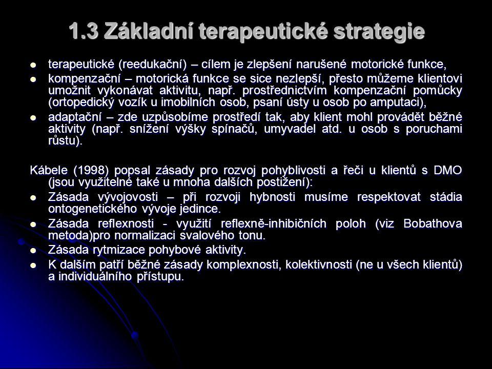 1.3 Základní terapeutické strategie