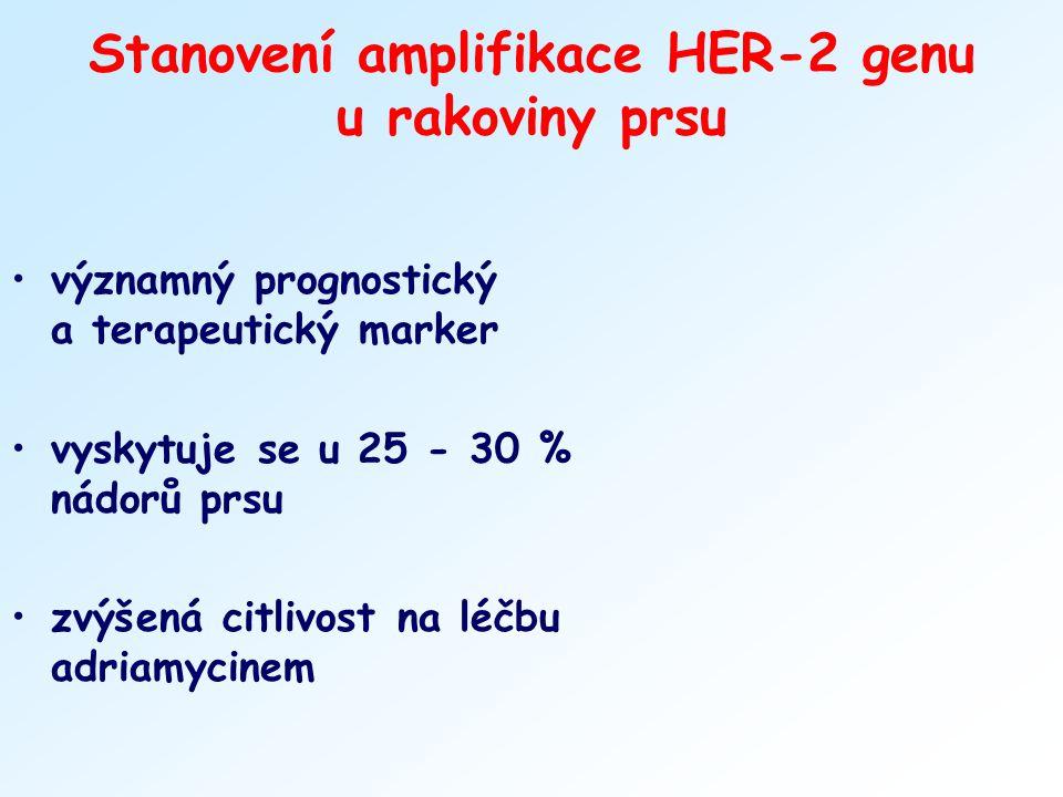 Stanovení amplifikace HER-2 genu u rakoviny prsu