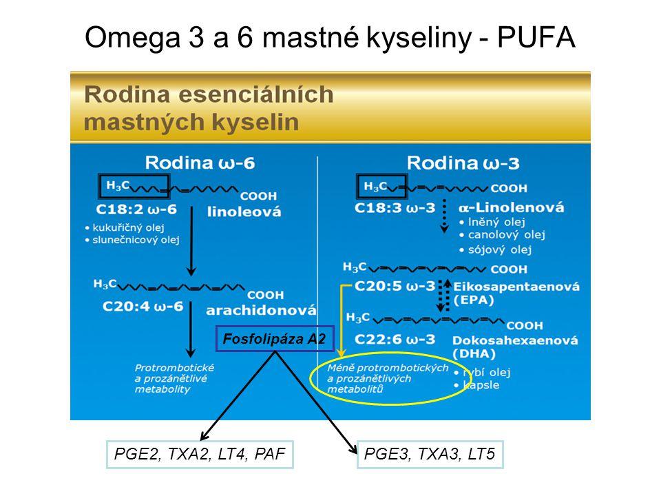 Omega 3 a 6 mastné kyseliny - PUFA
