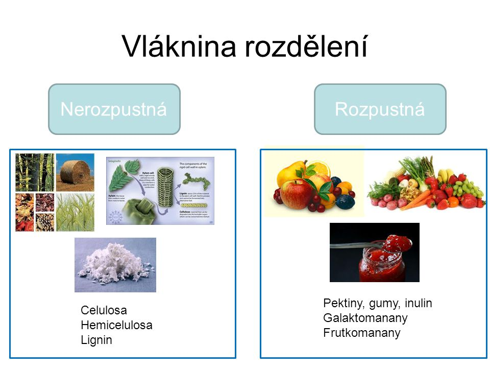 Vláknina rozdělení Nerozpustná Rozpustná Pektiny, gumy, inulin