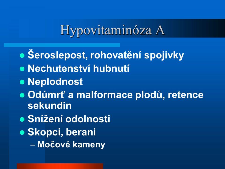 Hypovitaminóza A Šeroslepost, rohovatění spojivky Nechutenství hubnutí