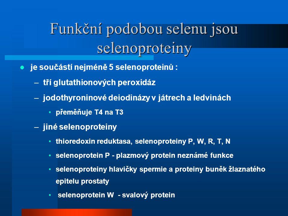 Funkční podobou selenu jsou selenoproteiny