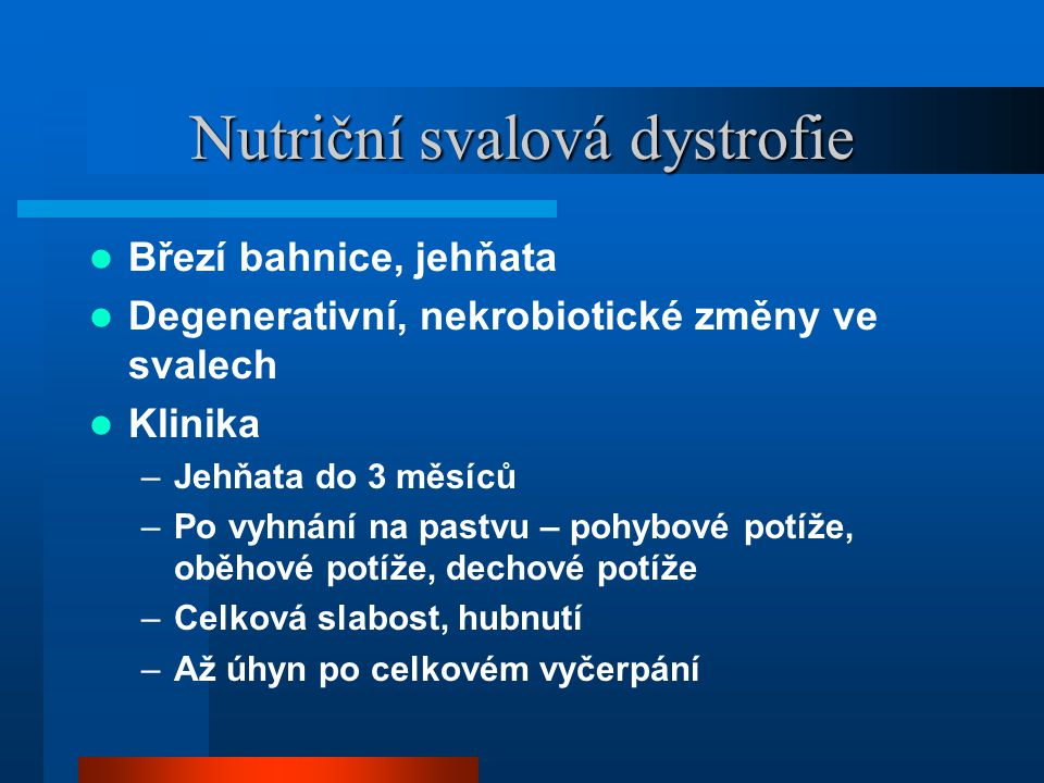 Nutriční svalová dystrofie