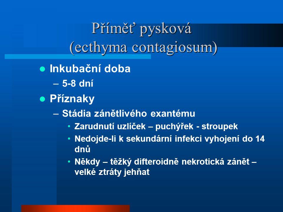 Příměť pysková (ecthyma contagiosum)