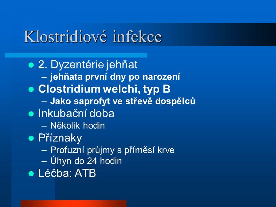 Klostridiové infekce 2. Dyzentérie jehňat Clostridium welchi, typ B
