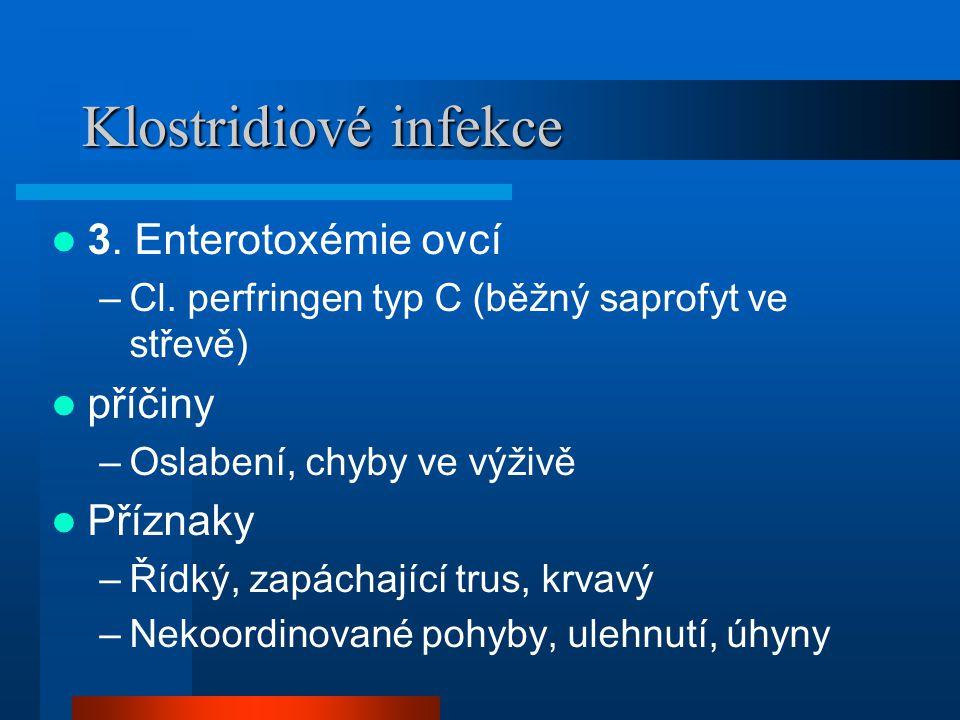 Klostridiové infekce 3. Enterotoxémie ovcí příčiny Příznaky