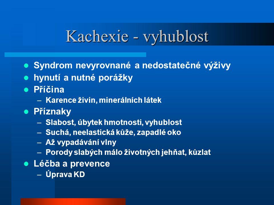 Kachexie - vyhublost Syndrom nevyrovnané a nedostatečné výživy