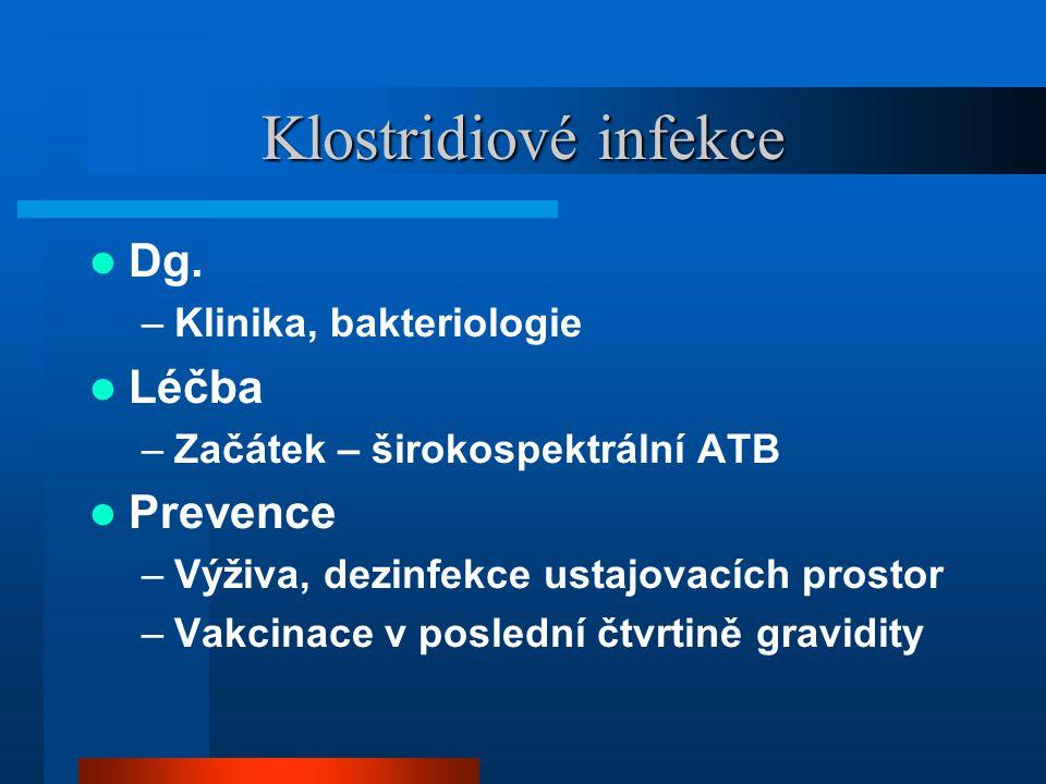Klostridiové infekce Dg. Léčba Prevence Klinika, bakteriologie