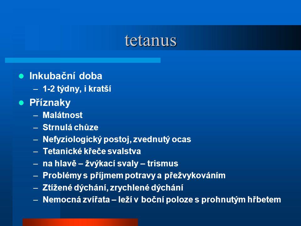 tetanus Inkubační doba Příznaky 1-2 týdny, i kratší Malátnost