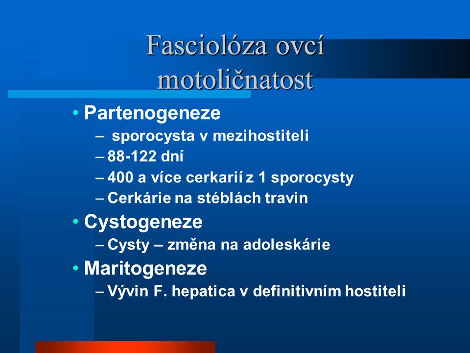 Fasciolóza ovcí motoličnatost