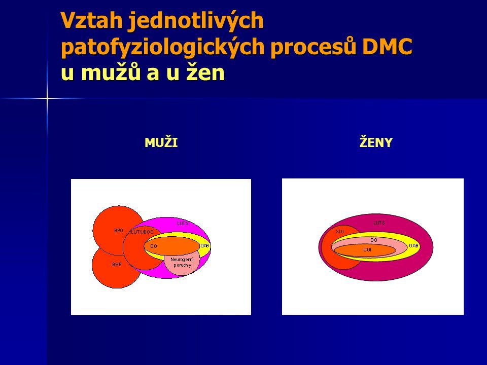 Vztah jednotlivých patofyziologických procesů DMC u mužů a u žen