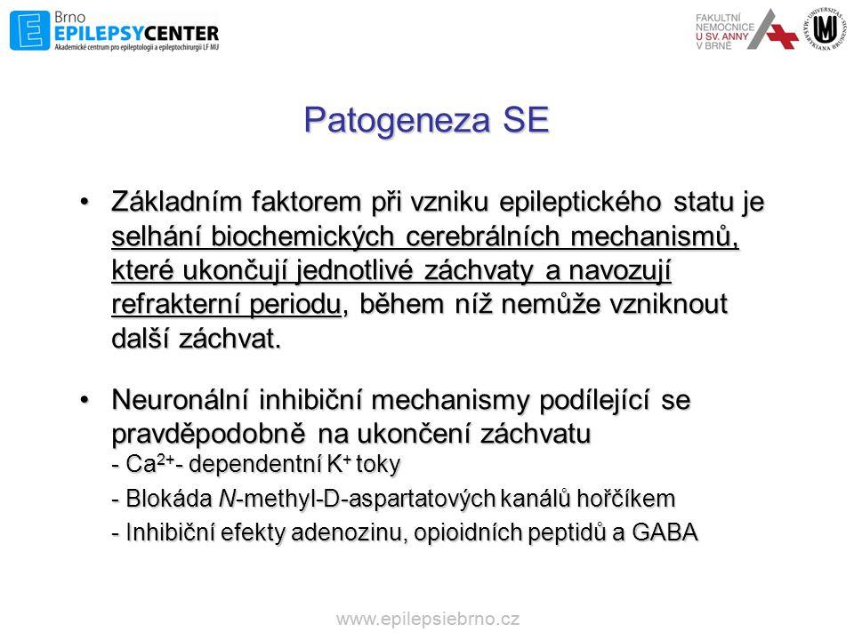 Patogeneza SE