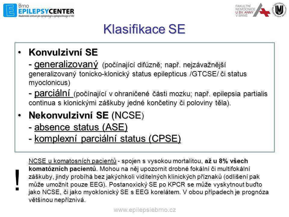 Klasifikace SE