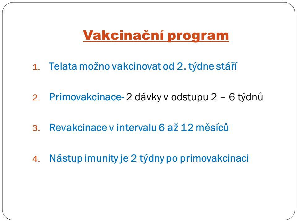 Vakcinační program Telata možno vakcinovat od 2. týdne stáří