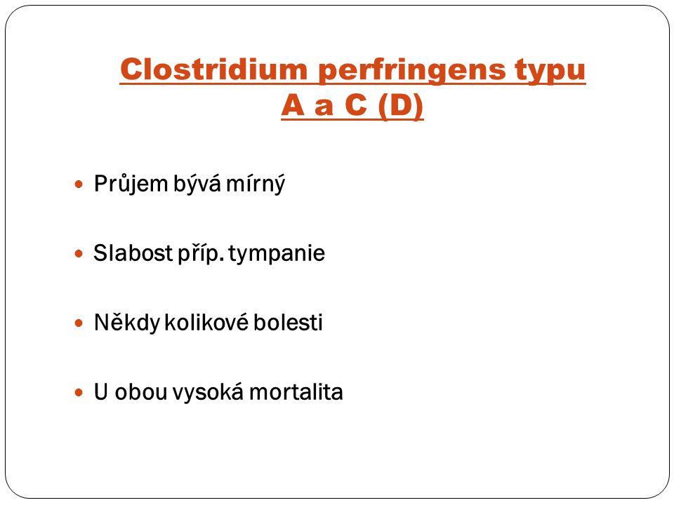 Clostridium perfringens typu A a C (D)