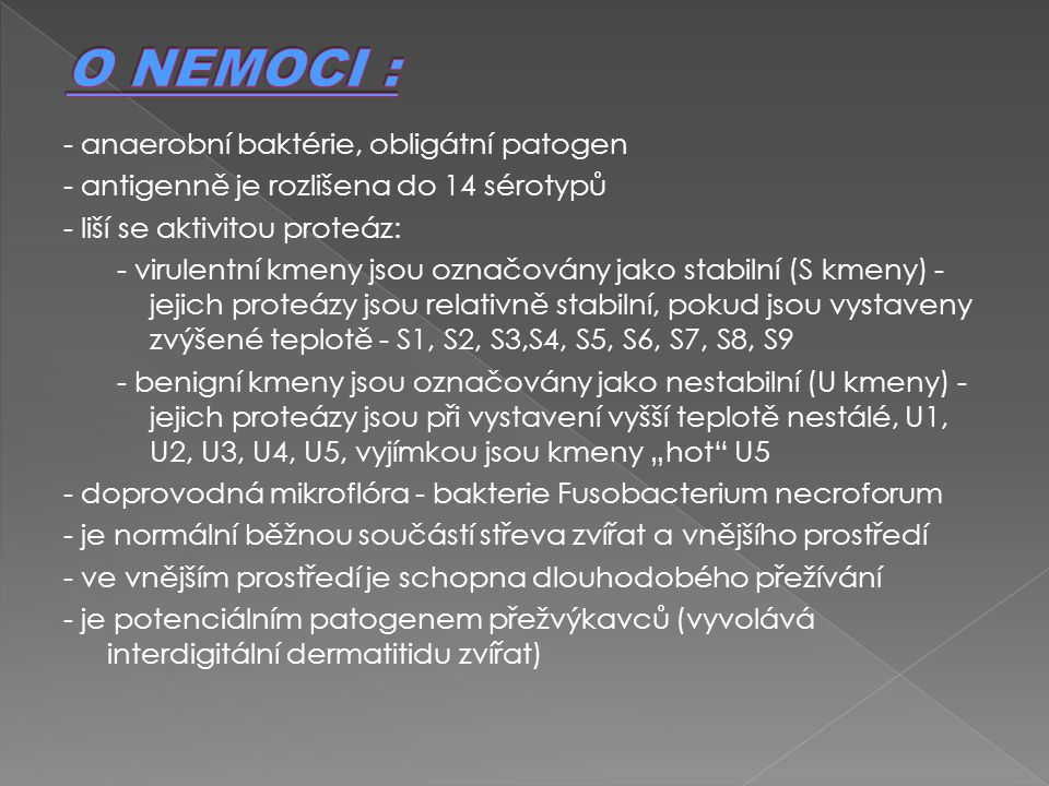 O NEMOCI : - anaerobní baktérie, obligátní patogen
