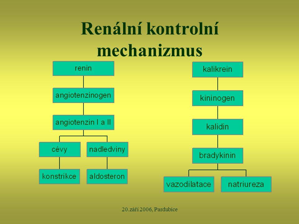 Renální kontrolní mechanizmus
