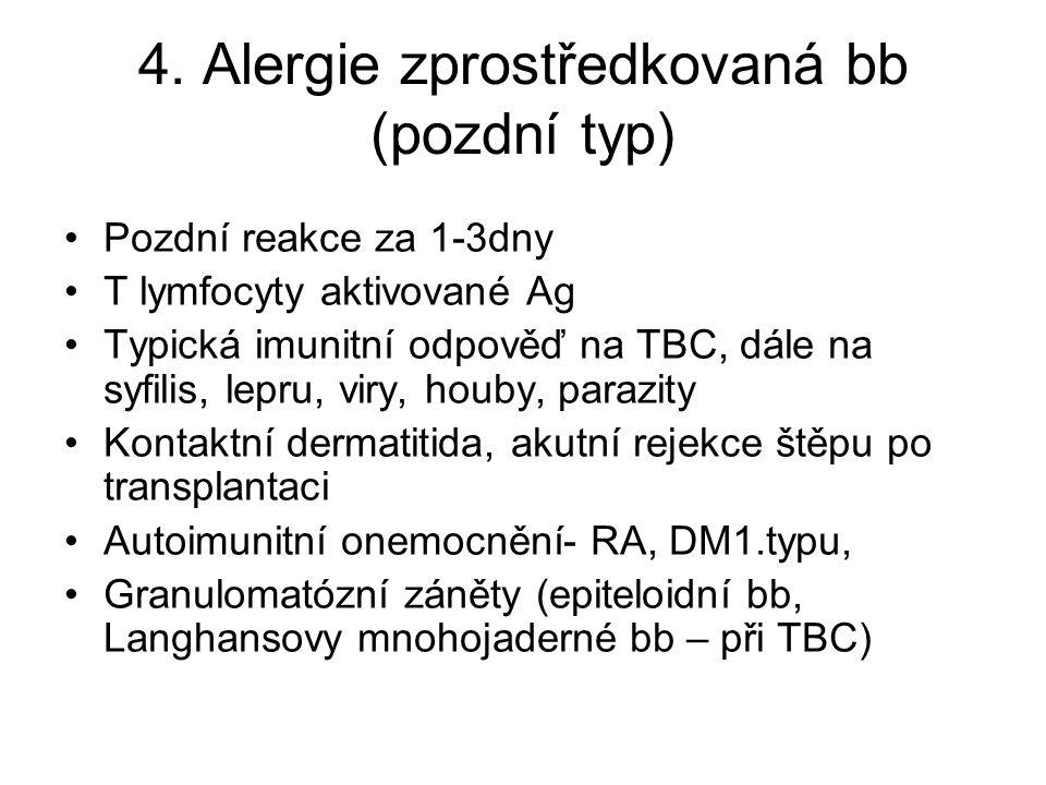 4. Alergie zprostředkovaná bb (pozdní typ)