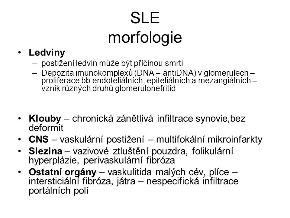 SLE morfologie Ledviny