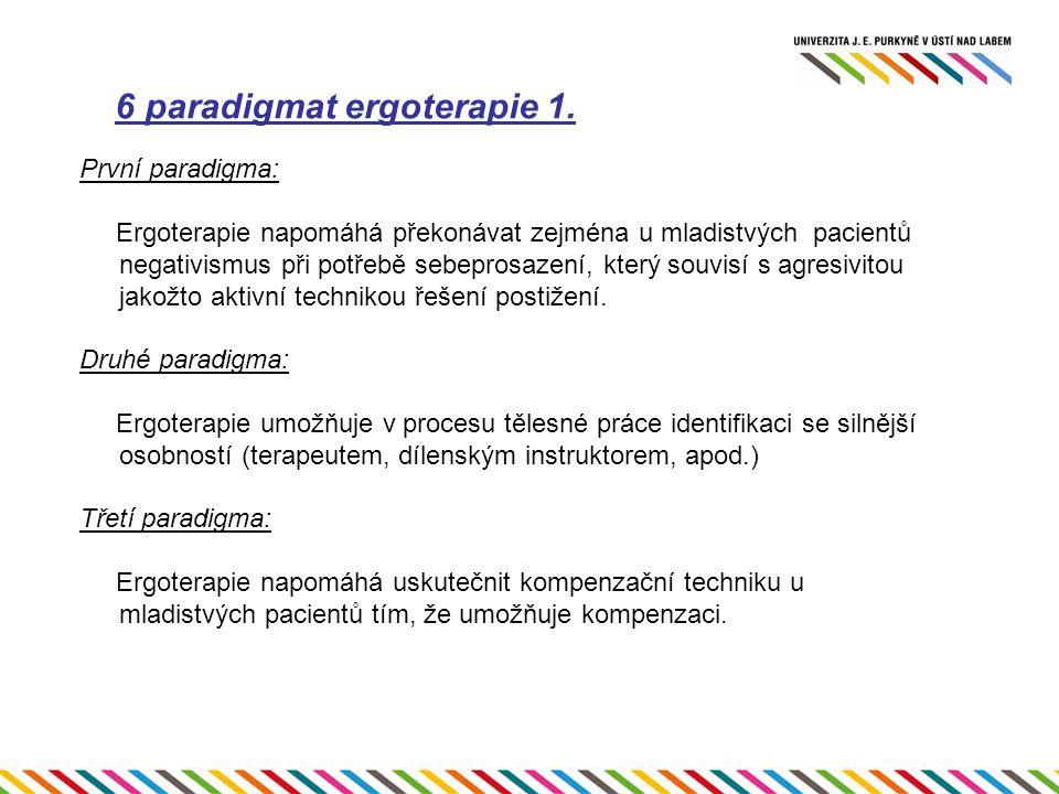 6 paradigmat ergoterapie 1.