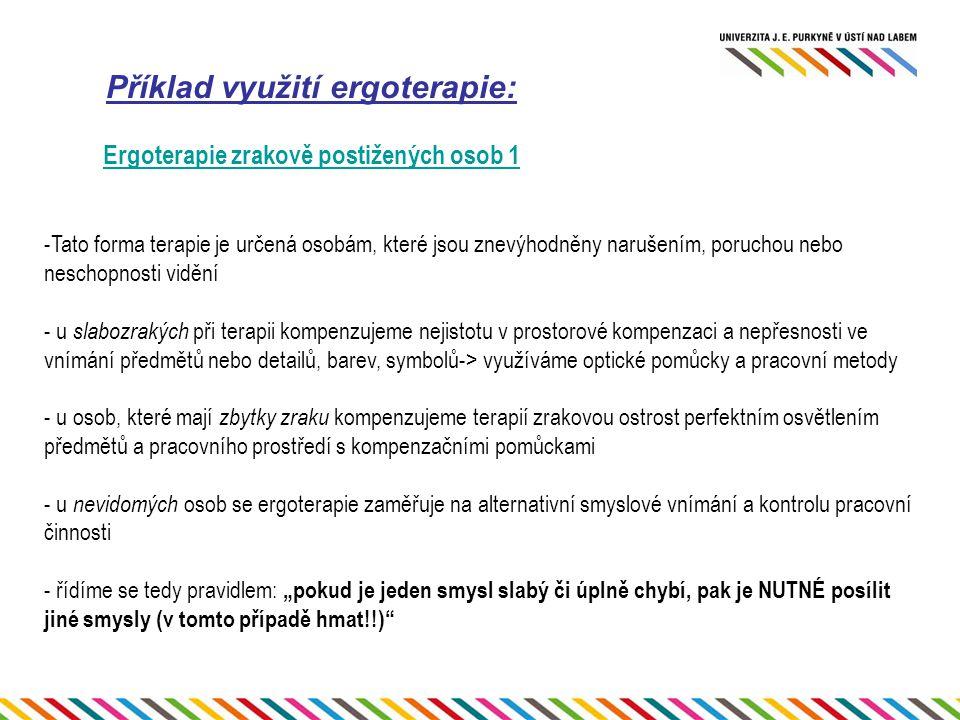 Příklad využití ergoterapie: Ergoterapie zrakově postižených osob 1