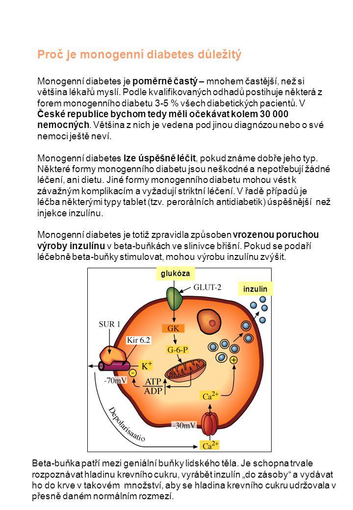Proč je monogenní diabetes důležitý