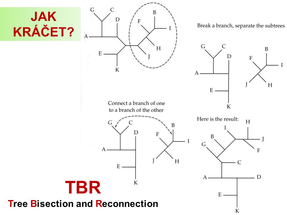 Tree Bisection and Reconnection