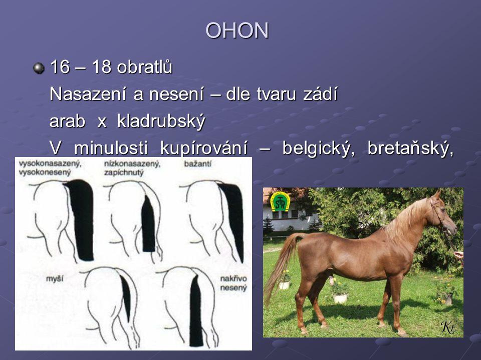 OHON 16 – 18 obratlů Nasazení a nesení – dle tvaru zádí