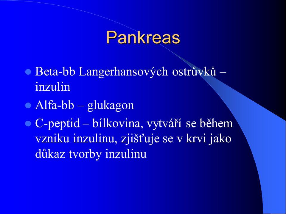 Pankreas Beta-bb Langerhansových ostrůvků – inzulin Alfa-bb – glukagon