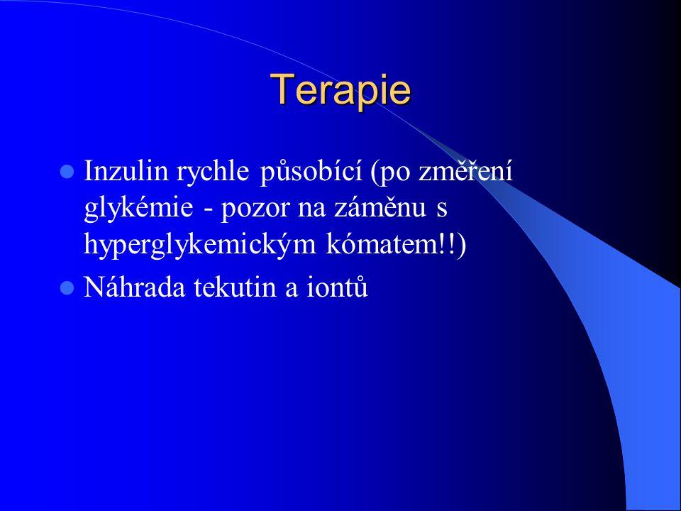 Terapie Inzulin rychle působící (po změření glykémie - pozor na záměnu s hyperglykemickým kómatem!!)