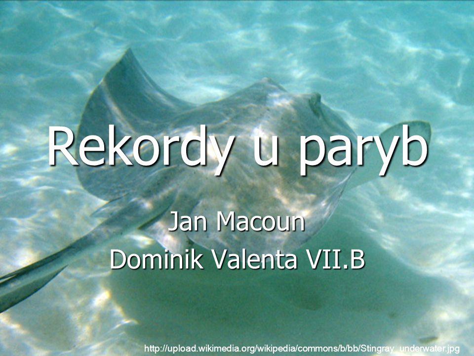 Jan Macoun Dominik Valenta VII.B