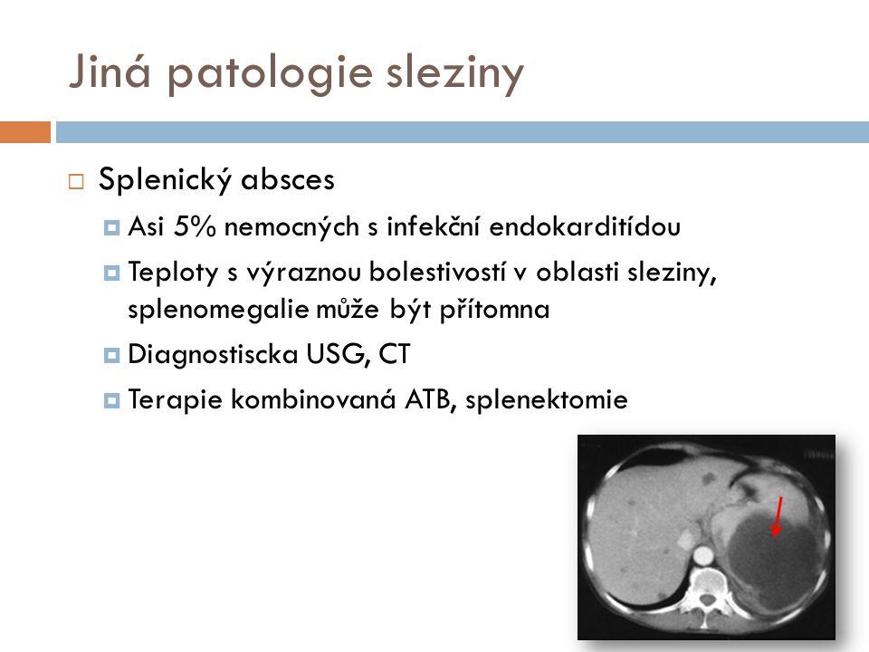 Jiná patologie sleziny