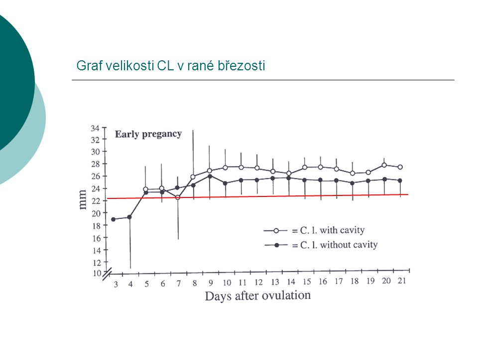 Graf velikosti CL v rané březosti