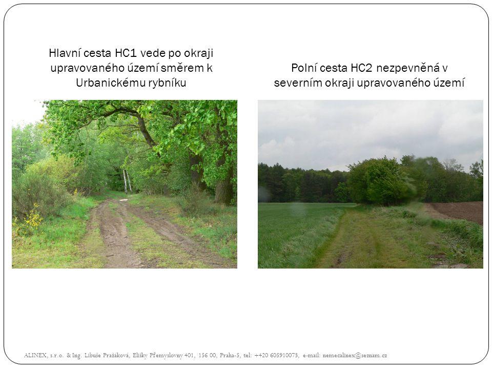 Polní cesta HC2 nezpevněná v severním okraji upravovaného území