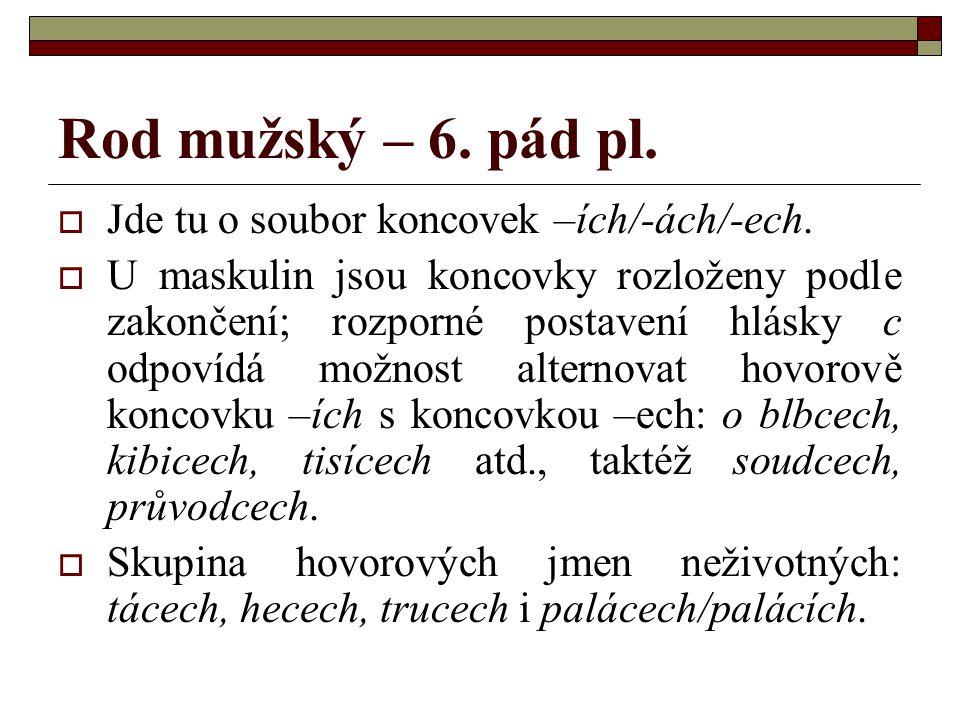 Rod mužský – 6. pád pl. Jde tu o soubor koncovek –ích/-ách/-ech.
