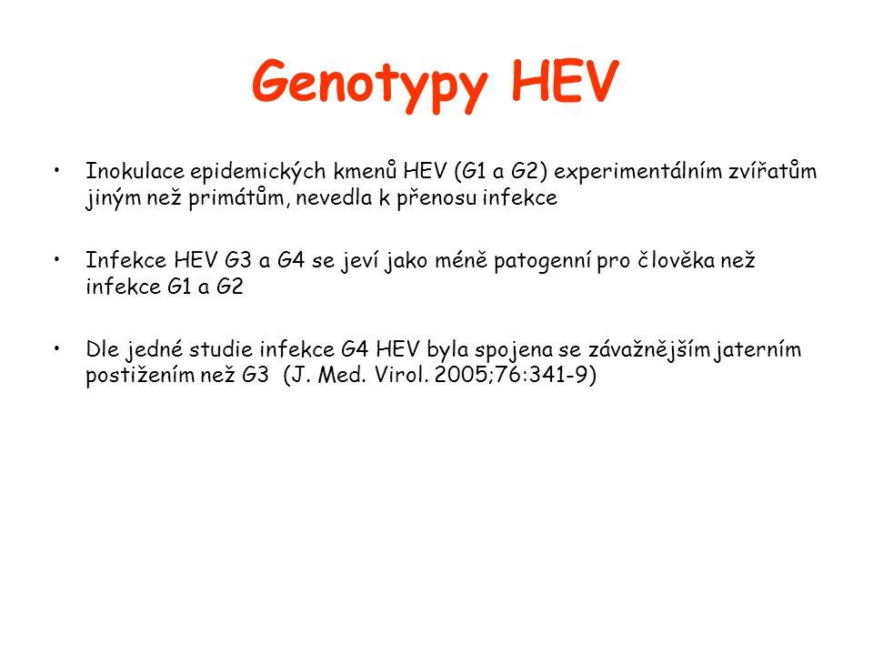 Genotypy HEV Inokulace epidemických kmenů HEV (G1 a G2) experimentálním zvířatům jiným než primátům, nevedla k přenosu infekce.