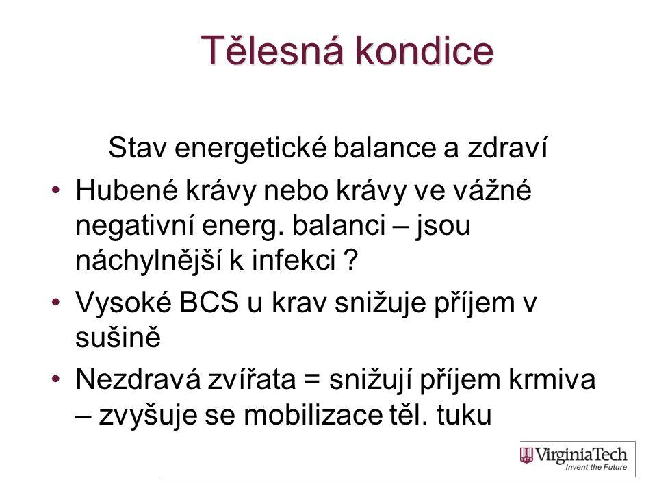 Stav energetické balance a zdraví