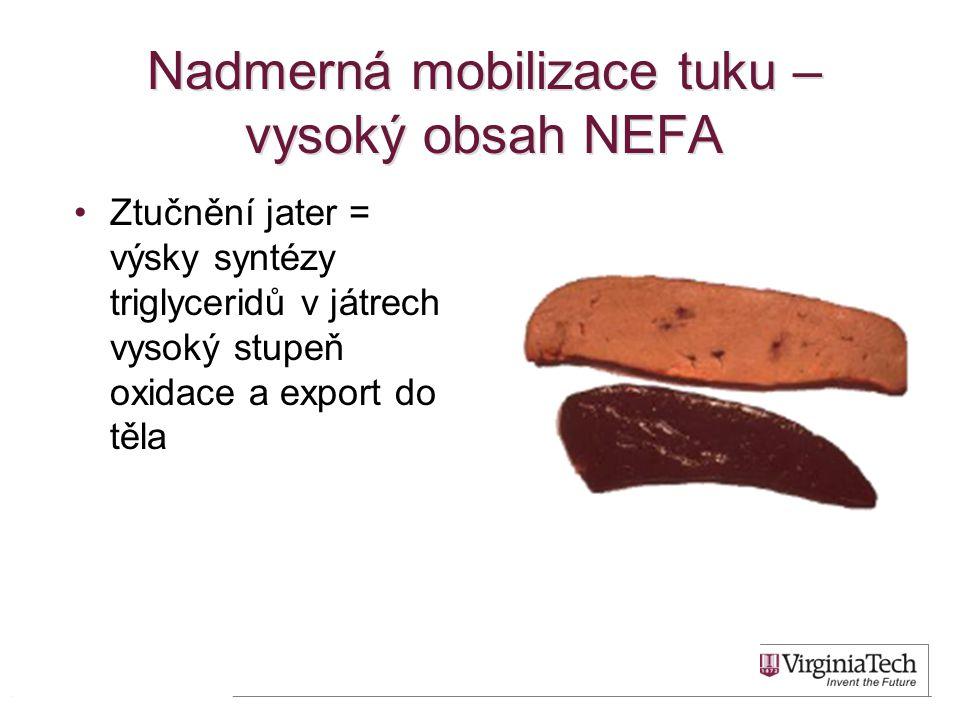 Nadmerná mobilizace tuku – vysoký obsah NEFA