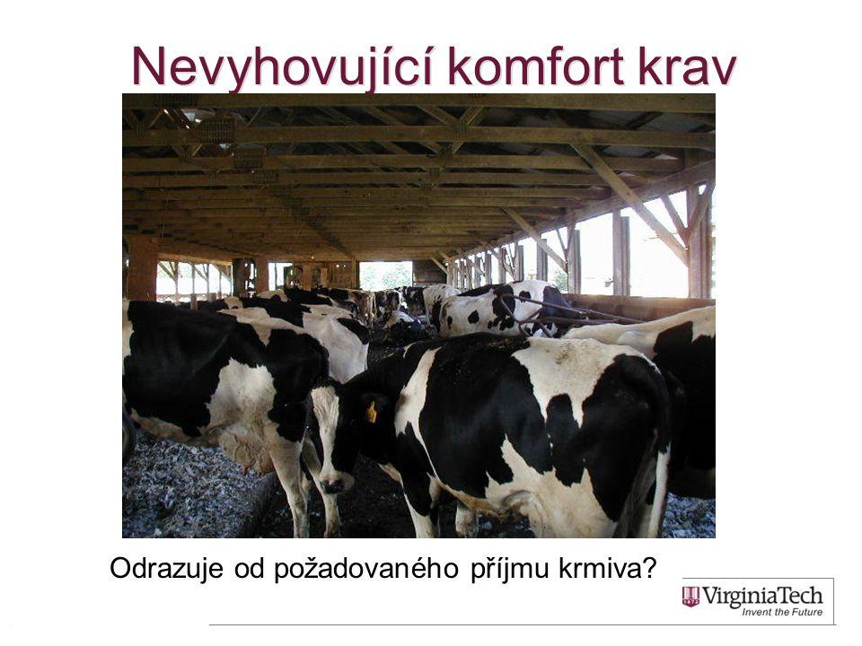 Nevyhovující komfort krav