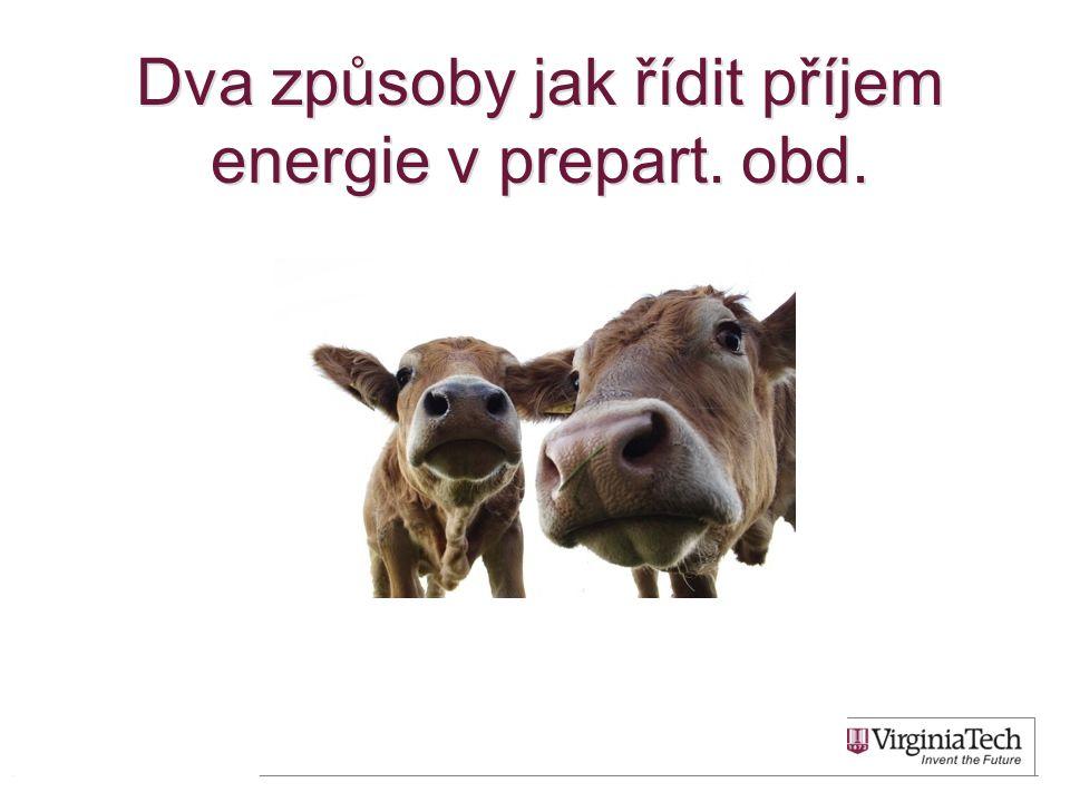 Dva způsoby jak řídit příjem energie v prepart. obd.