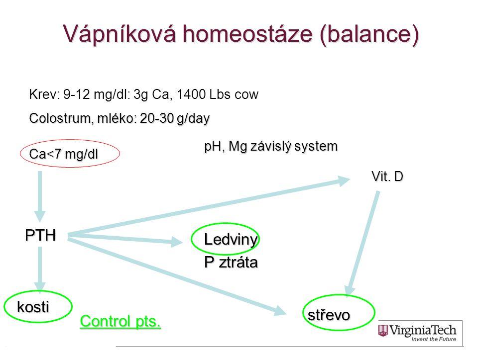 Vápníková homeostáze (balance)