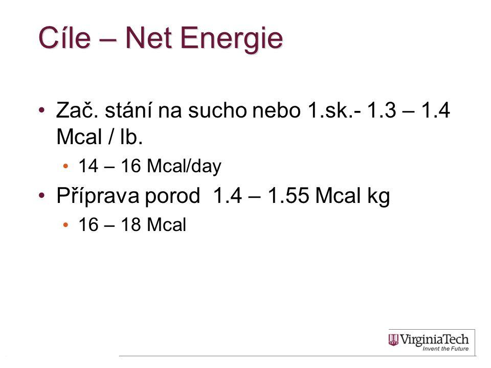 Cíle – Net Energie Zač. stání na sucho nebo 1.sk.- 1.3 – 1.4 Mcal / lb. 14 – 16 Mcal/day. Příprava porod 1.4 – 1.55 Mcal kg.