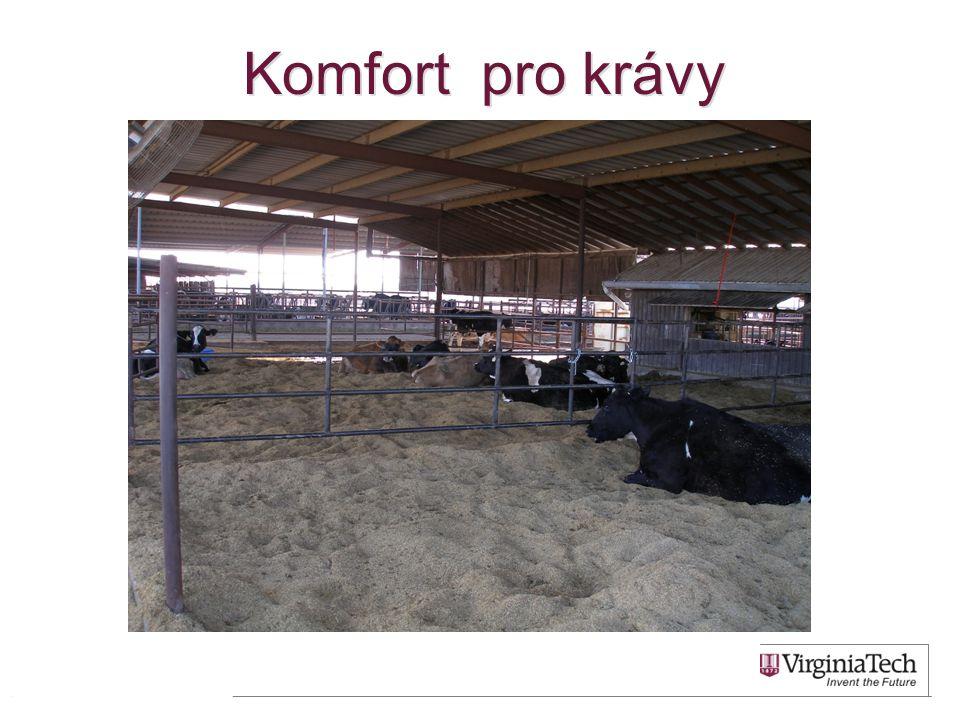 Komfort pro krávy