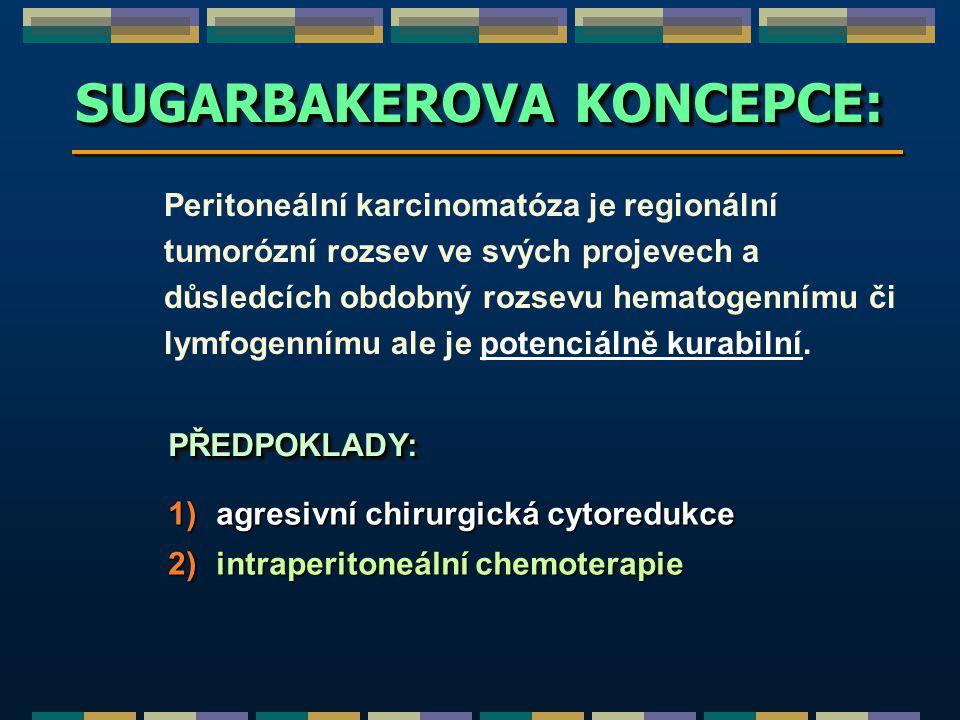 SUGARBAKEROVA KONCEPCE:
