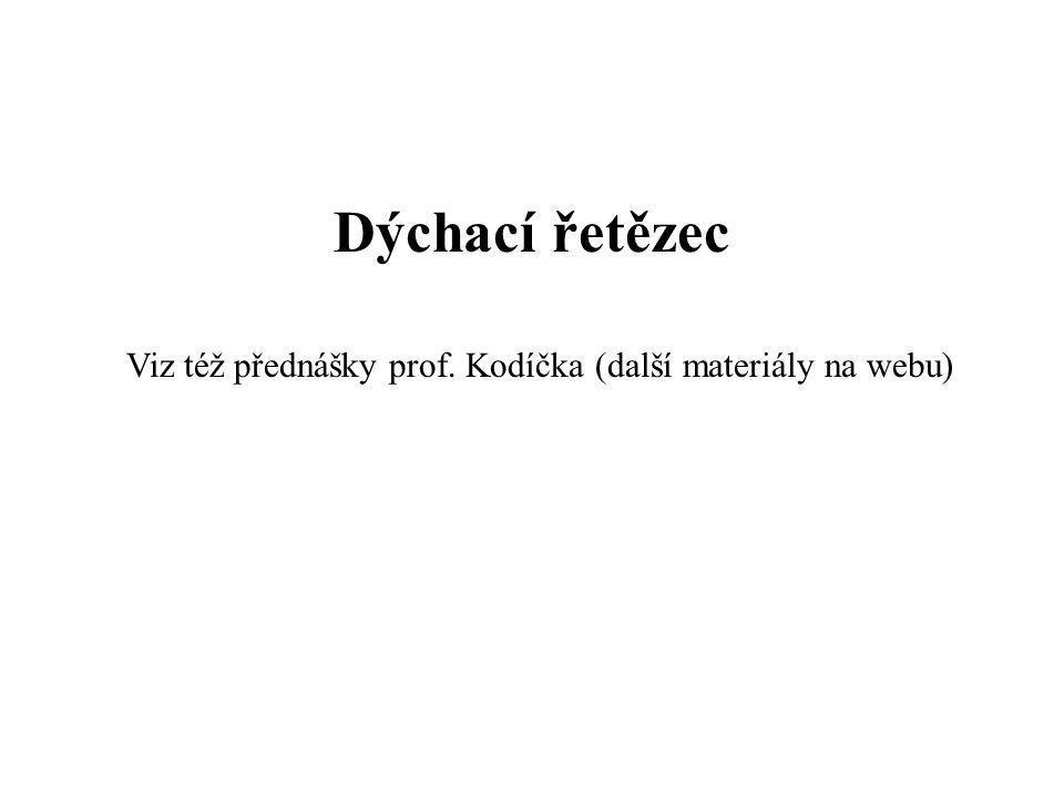 Dýchací řetězec Viz též přednášky prof. Kodíčka (další materiály na webu)