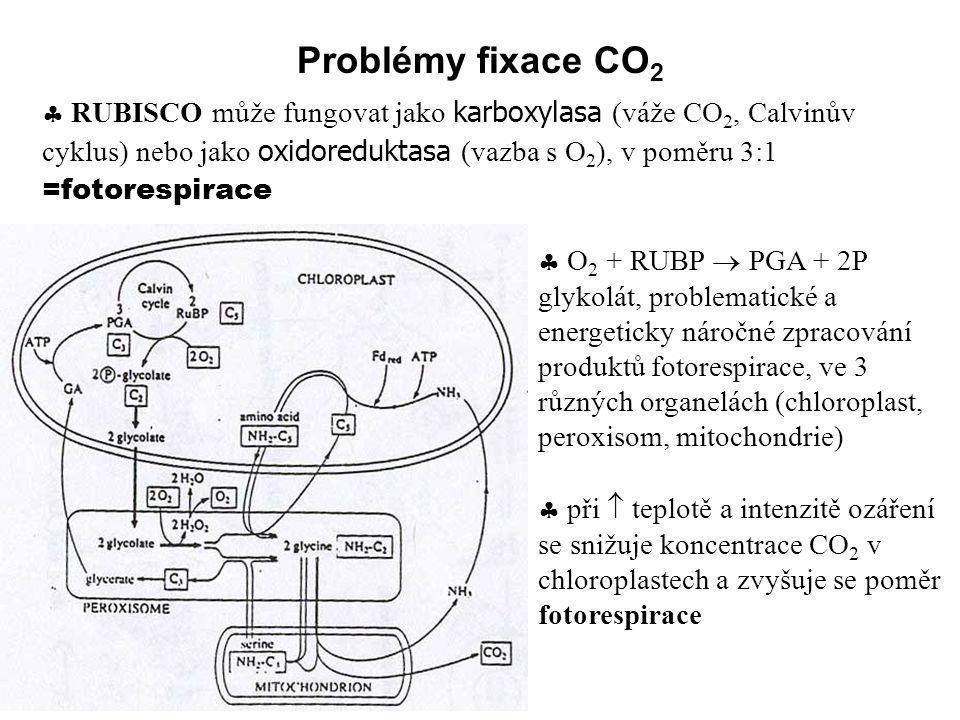Problémy fixace CO2