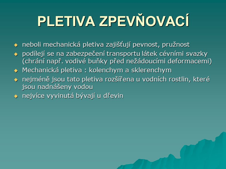 PLETIVA ZPEVŇOVACÍ neboli mechanická pletiva zajišťují pevnost, pružnost.