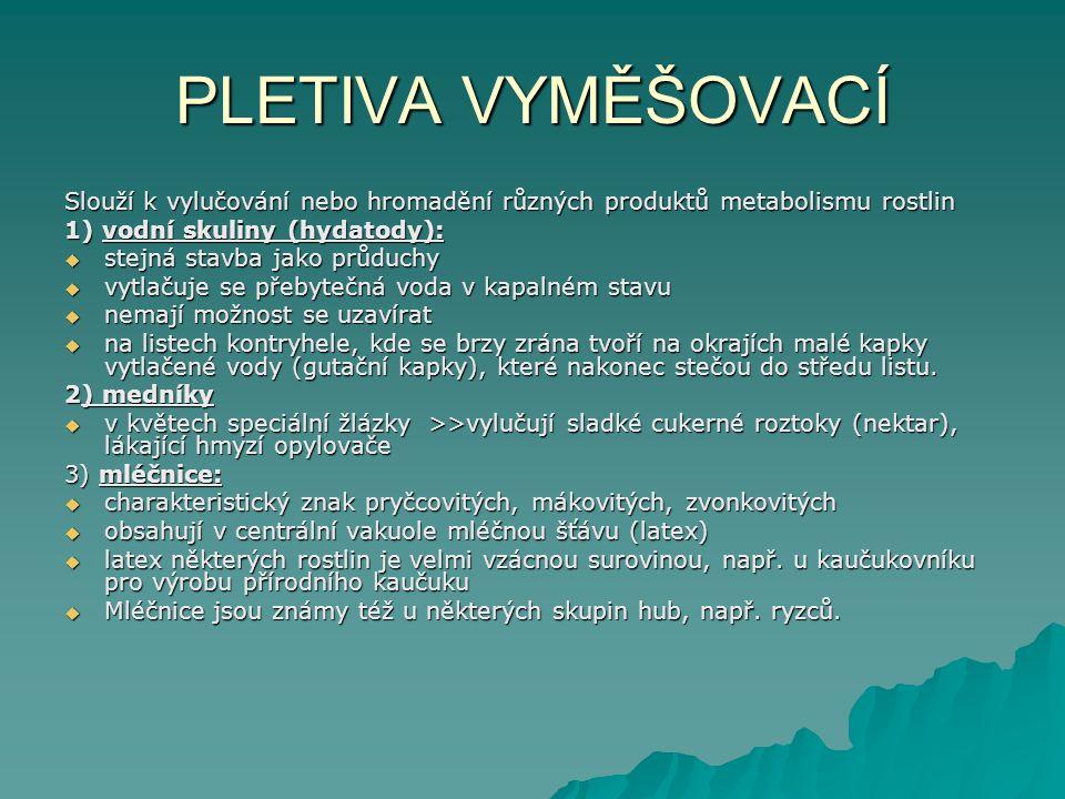 PLETIVA VYMĚŠOVACÍ Slouží k vylučování nebo hromadění různých produktů metabolismu rostlin. 1) vodní skuliny (hydatody):