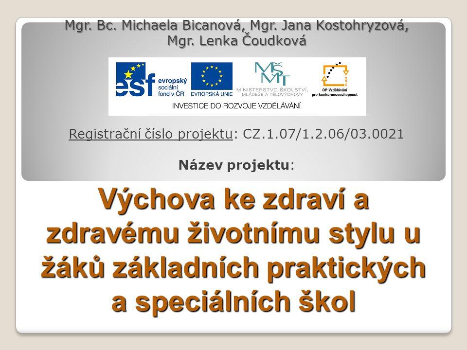 Registrační číslo projektu: CZ.1.07/1.2.06/03.0021