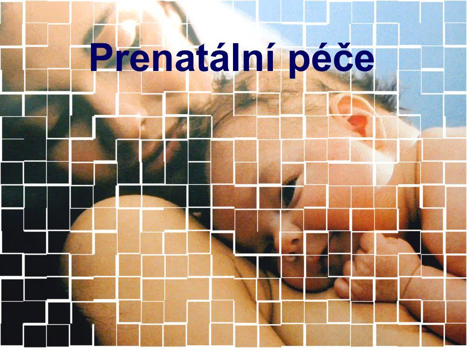 Prenatální péče